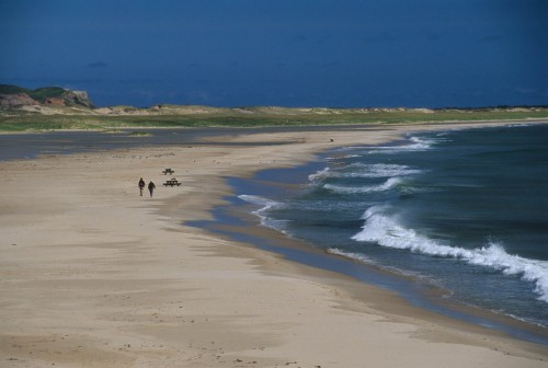 Randonnées pédestres sur la plage - Crédit Photo - M.Bonato