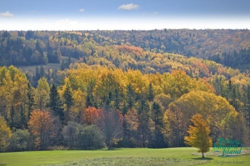 Bonshaw Hills - Credit Photo Tourism PEI - Barrett & MacKay
