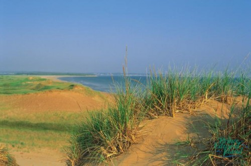 Dune - Credit Photo Tourism PEI Paul Baglole