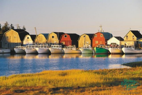 Malpeque - Credit Photo Tourism PEI - John Sylvester